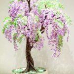 красивое дерево