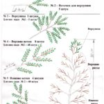 схема сборки деревьев